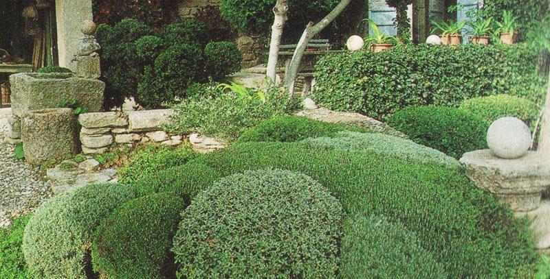 NB Jardins - Jardin Méditerrannéen