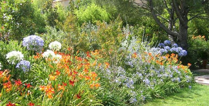 NB Jardins - Jardin Exotique