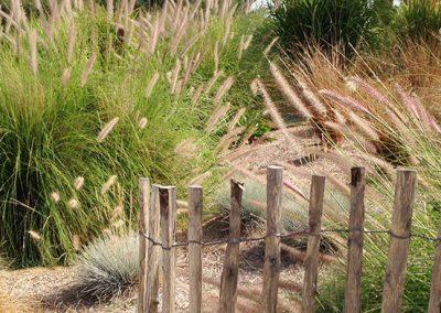 NB Jardins - Jardin Camarguais