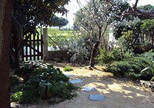 Jardin Sec Minéral